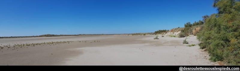 visiter la camargue à vélo dunes et plages