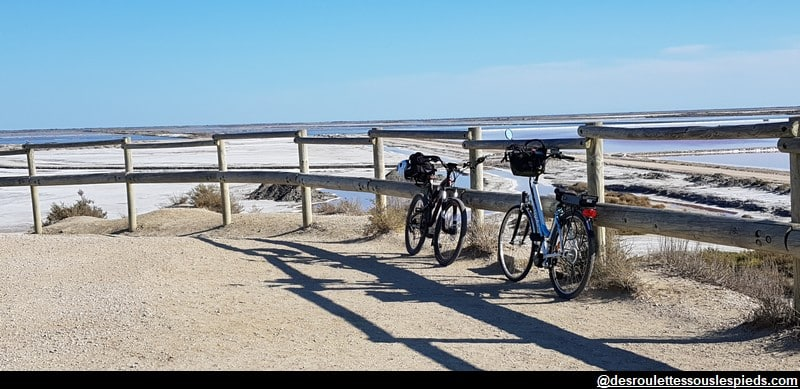 visiter la camargue vélo point de vue du sel