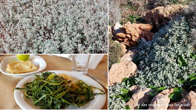 quoi manger en crete