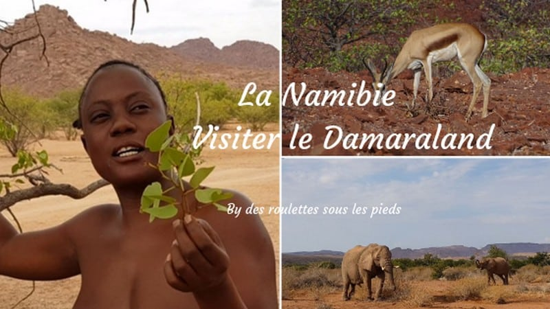 comment visiter la nambie le damaraland