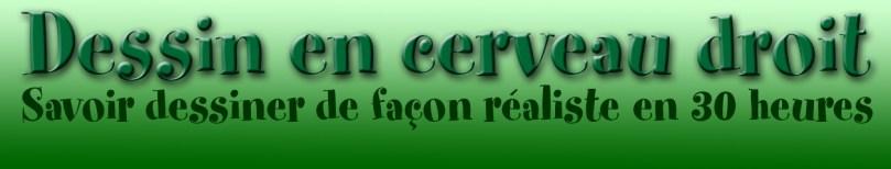 Dessin en Cerveau Droit. Logo vert réalisé par Richard Martens, ©2015