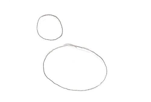 1ère étape pour apprendre comment dessiner un canard sur l'eau : les formes de base du canard: un rond pour la tête et un pour le corps