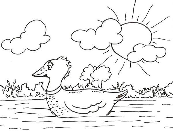 On peut aussi dessiner un papa canard et ajouter un décor: un lac, des nuages, un soleil...