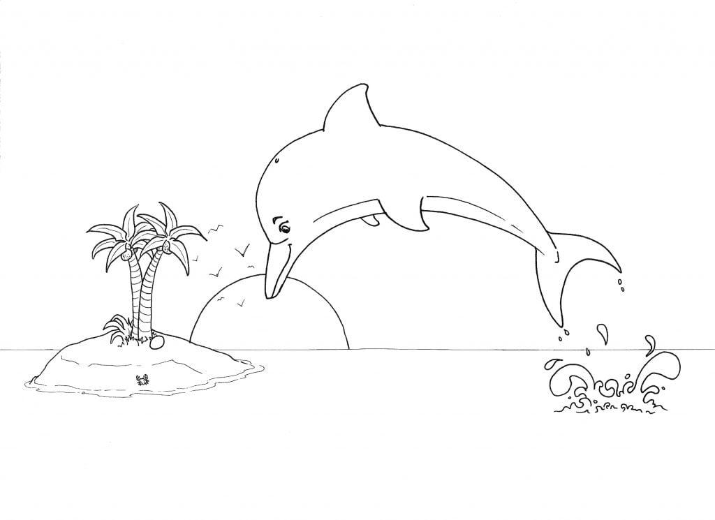 étape 5 le décor et le paysage autour du dauphin