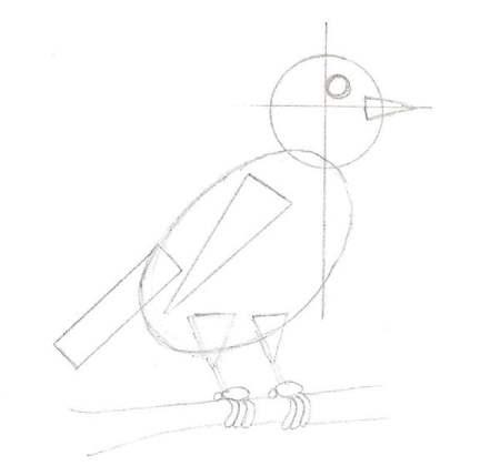 Termine les formes de base du dessin d'oiseau
