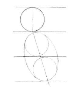 les formes de bases du corps et de la tête pour dessiner un koala