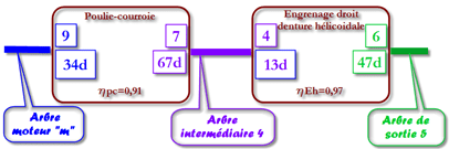 Synotique1