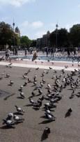 Площад Каталуня