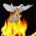 Continuate a chiedere il battesimo con lo Spirito Santo