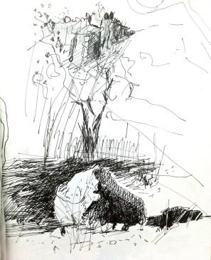 Sketch from Katherine Gorge in Nitmiluk National Park