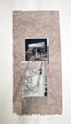 Fault Lines, 2010, intaglio. handmade paper, collage and staples 38x18 cm print, 50x35 cm paper.