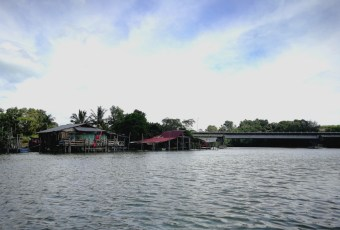 Wetland Kampung Belukar Durian dan Paya Bakau
