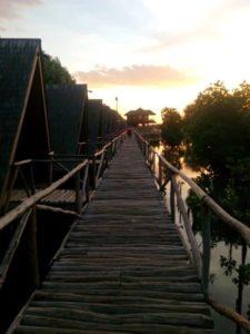 Wisata Mangrove Muara angke