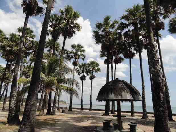 Destinasi Wisata Terbaik Di Kupang-Pantai Lasiana