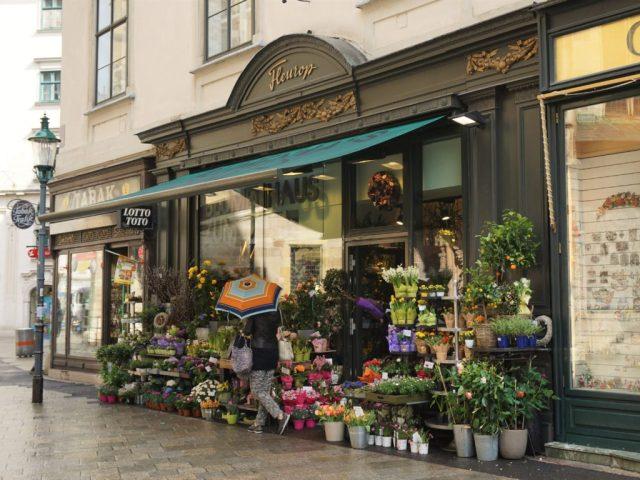 Sightseeing in Vienna city center