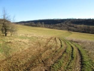 Накрая селото прелива в поляна и гора