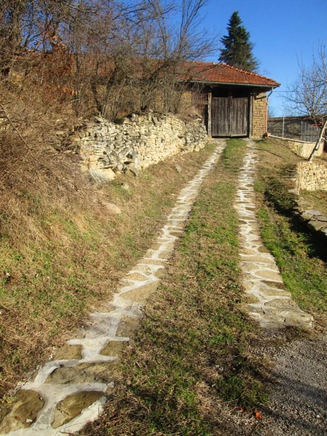 Село Косарка 5