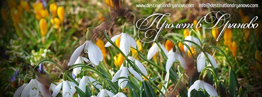 Пролет в Дряново