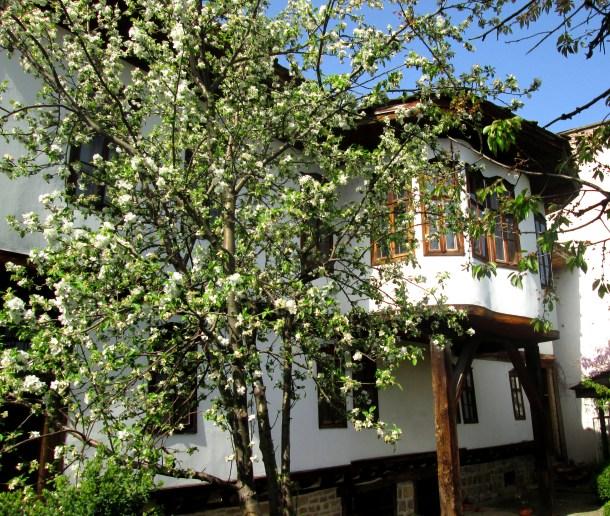 Икономовата къща