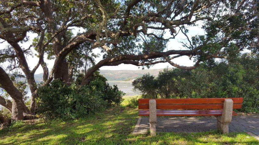 Destination Garden Route - open space in nature