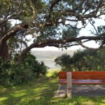 Destination Garden Route - open space in nature