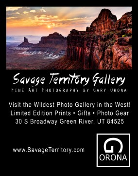 savage-territory-gallery-gary-orona-001-2000h