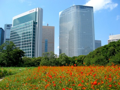 The garden provides in a stunning contrast. A feudal garden against  Shiodome's 21st century skyscrapers in the background.