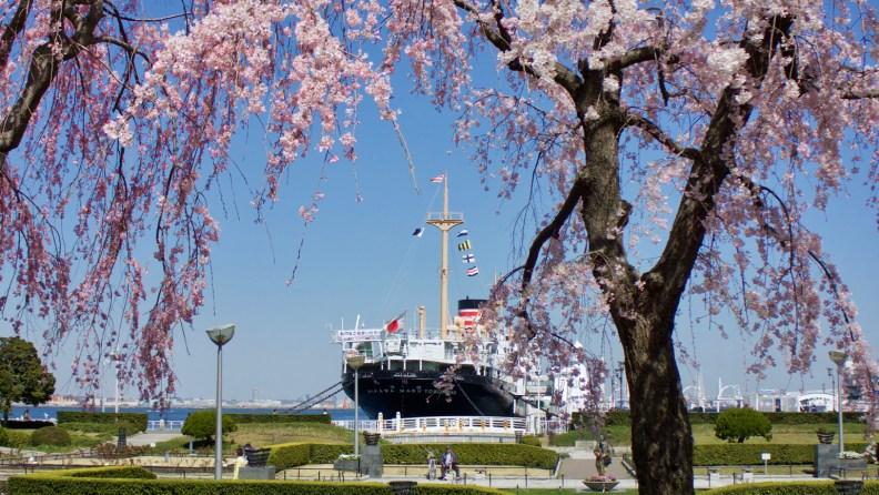 Hikawa Maru ocean liner viewed from Yamashita Park in Yokohama