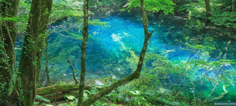 Lac bleu dans les montagnes Shirakami sanchi