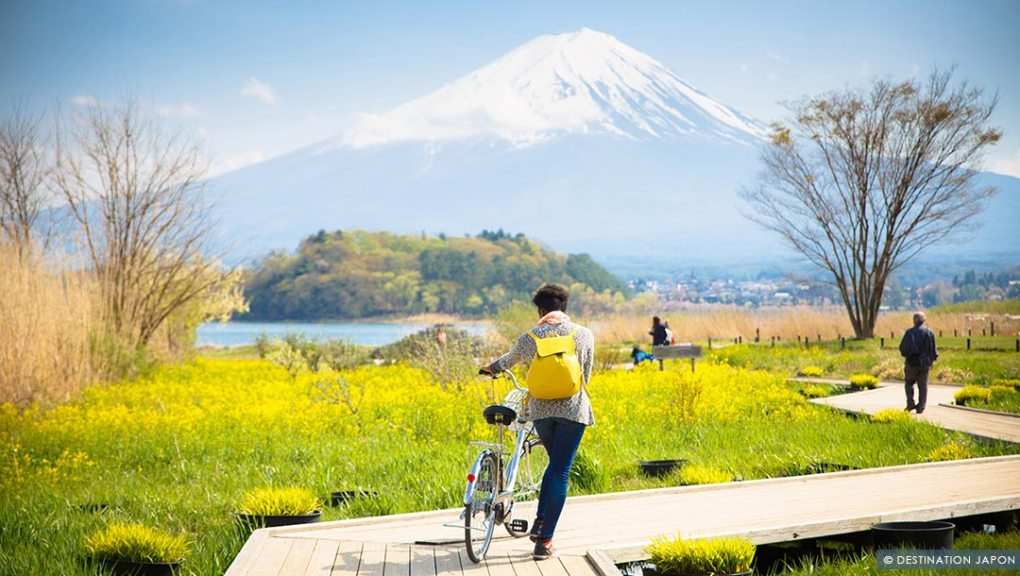 Touriste en balade à vélo à Kawaguchiko