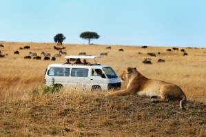 Family-Safari-in-Africa