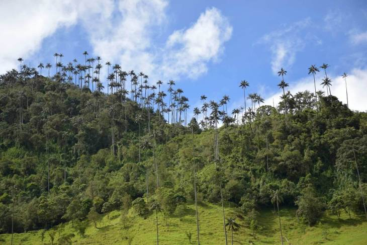 Valle de Cacora was one of our highlights in Southern Colombia
