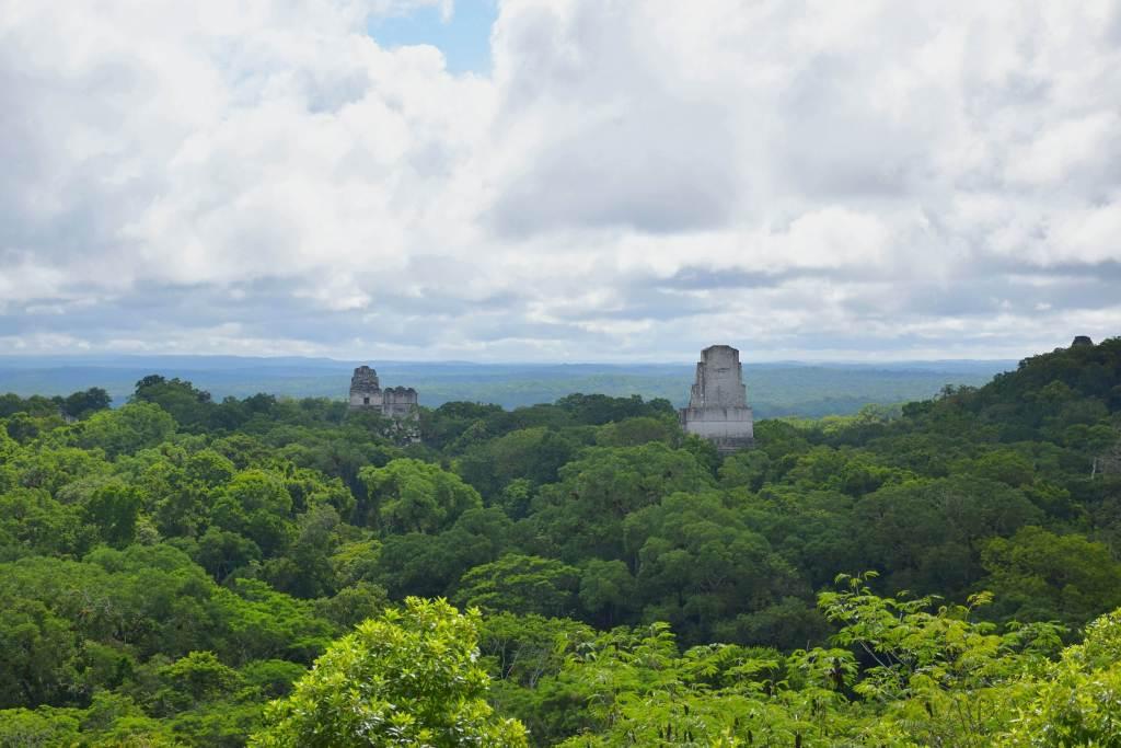 tikal guatemala viewpoint