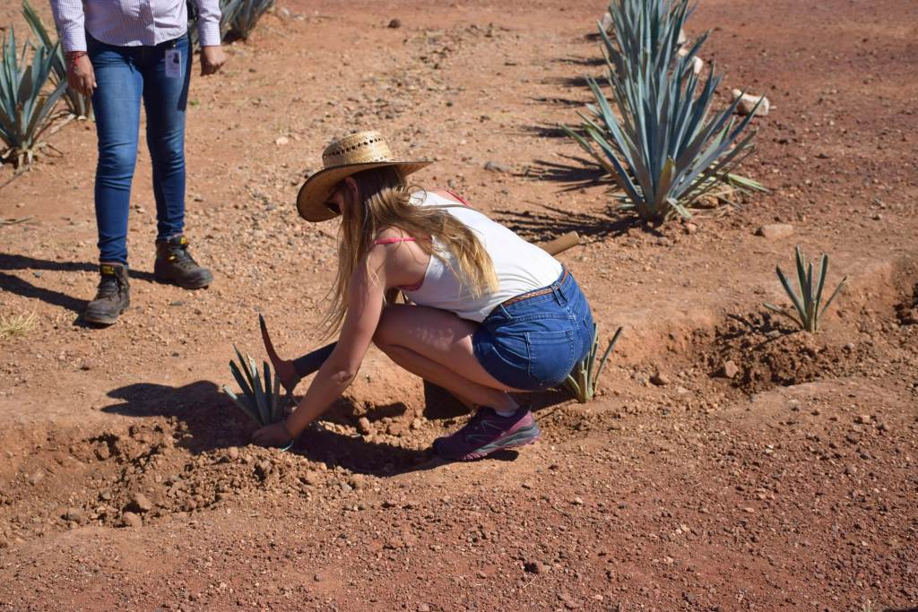 on the Tequila tour in Mexico