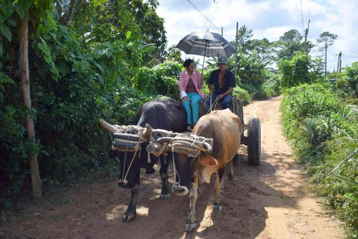 getting around in Vinales