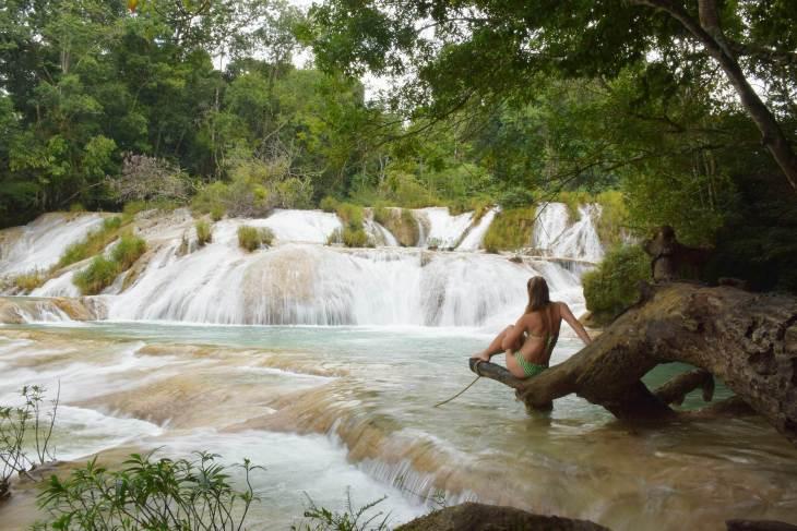 Palenque waterfalls Roberto Barios