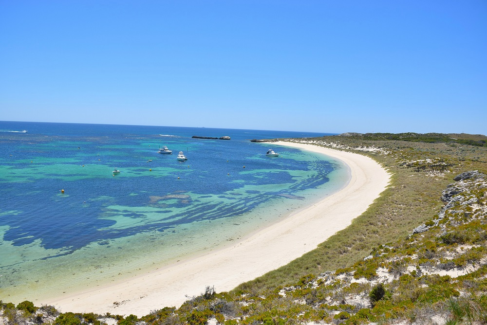 Rottnest Island Day Trip: All You Need to Know