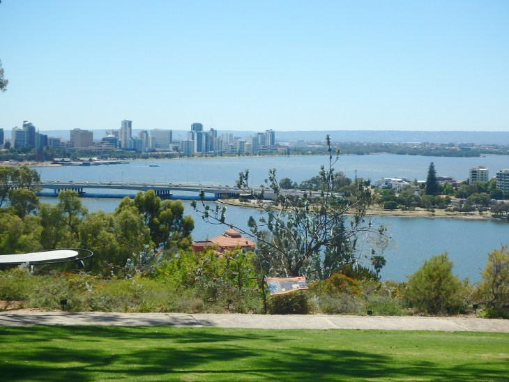 Kings park things to do in perth