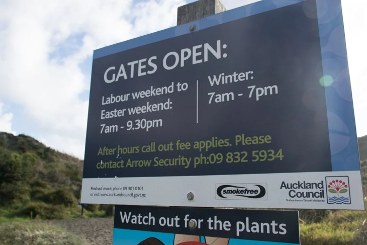 Bethells beach opining hours