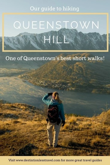 queenstown hill Pin