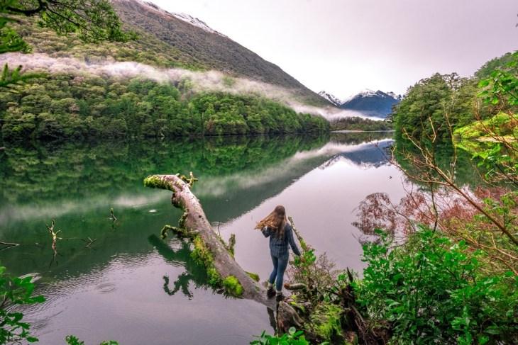 Scenic stops between Milford and Te Anau