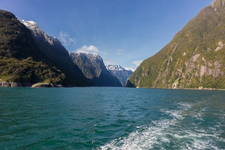 on a milford sound boat cruise