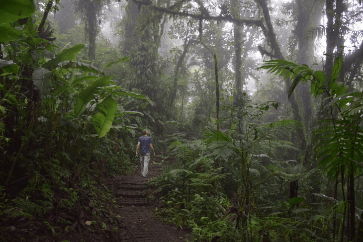 monteverde cloud forest is one of the best places to visit in costa rica