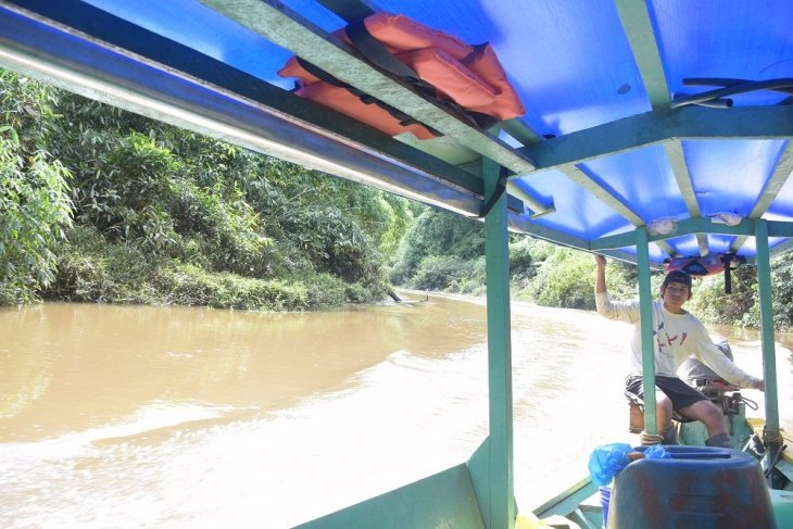 travelling to our accomodation in the amazon jungle