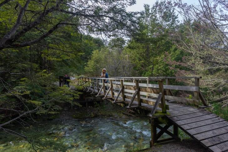 the 12 mile delta queenstown trail bridge