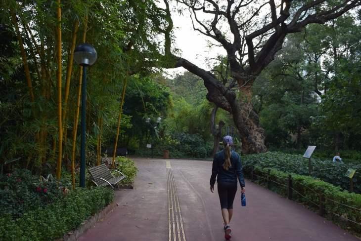 kowloon park near chungking mansions hong kong