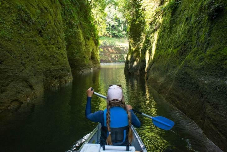 Canoeing the whanganui journey