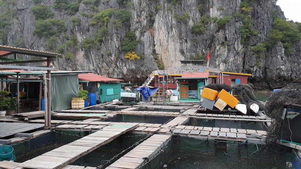 Village flottant et parc à poissons