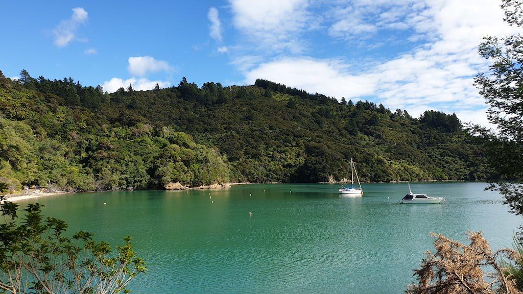 Kenepuru Sound Te Mahia bay