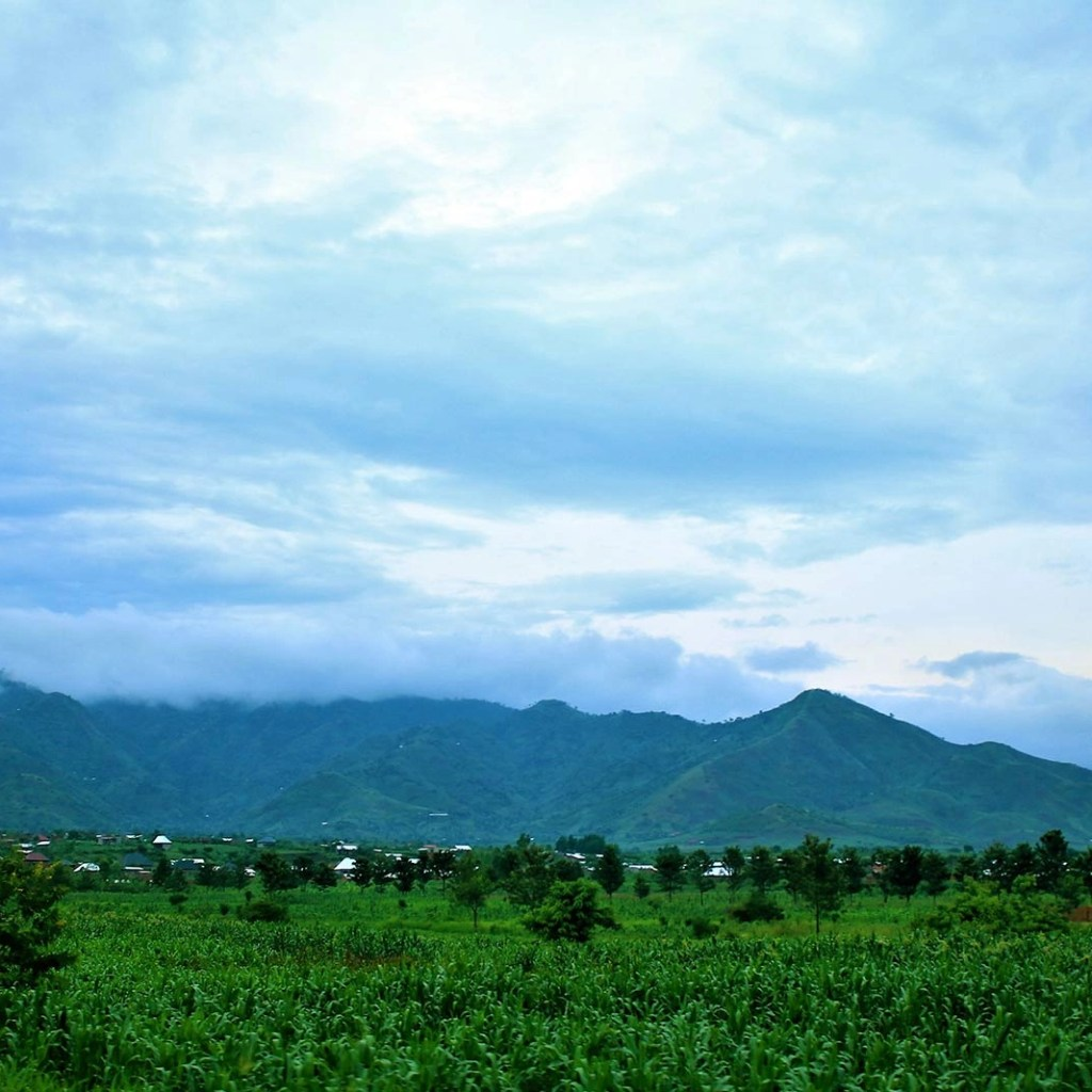 My Uganda Safari Experience: The Jagged Rwenzori Mountains Embrace the Skies of Western Uganda to Kibale